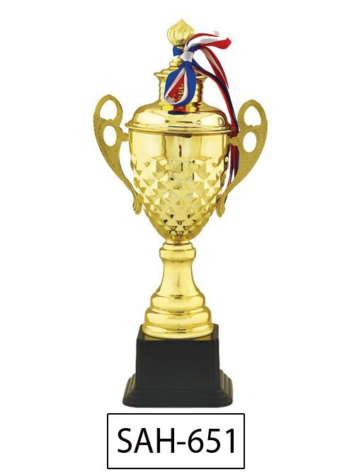 cup for winner