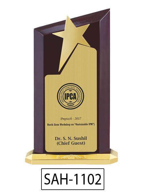 premium award actor
