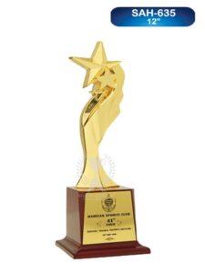 Premium Metal Star Trophy