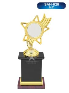 Metal Award With Mirer Effect