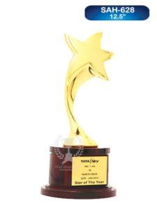 Metal Big Star Award
